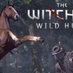The Witcher 3: Wild Hunt: תמונות ופרטים חדשים