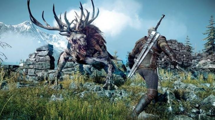 The Witcher 3 Wild Hunt new pic