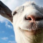 סימולטור העזים: טריילר השקה