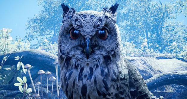 primal owl